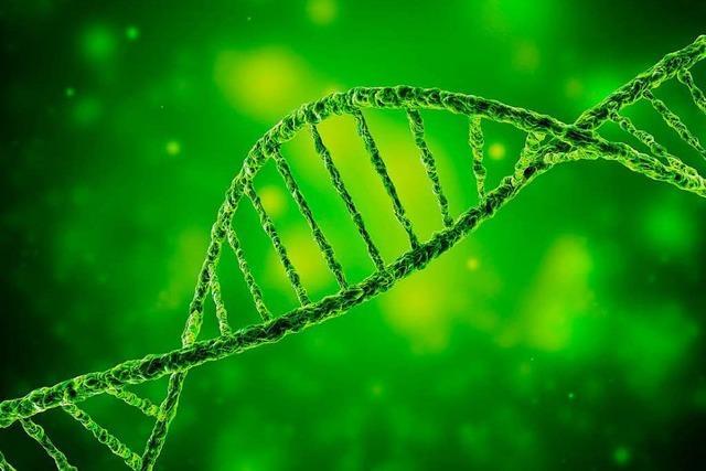 Erweiterte DNA-Analyse: Antrag auf raschen Beschluss scheitert
