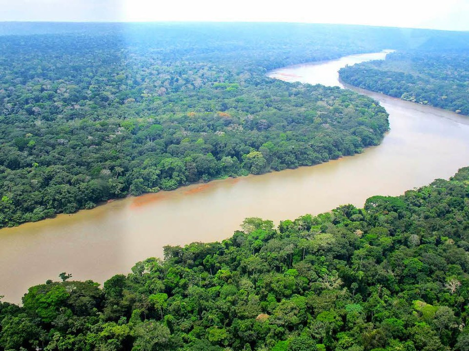 Der Sangha, ein Nebenfluss des Kongo  | Foto: -