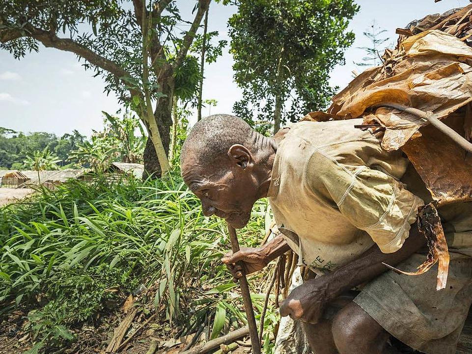 Schwer beladen geht dieser alte Mann vom Volk der BaAka seines Weges.  | Foto: -