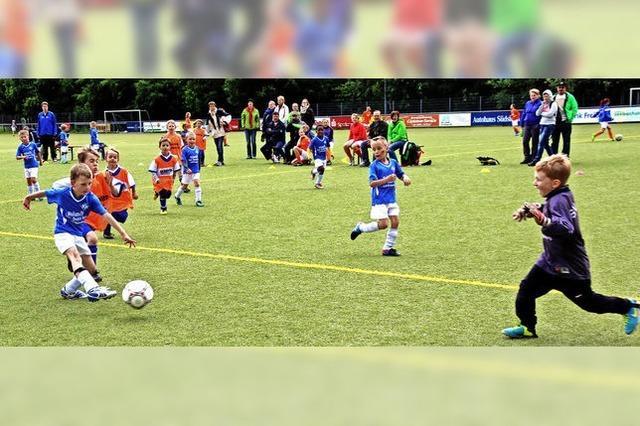 Der Sportverein Titisee benötigt einen neuen Kunstrasen