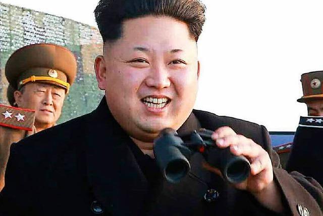 Trump droht mit US-Alleingang gegen Nordkorea