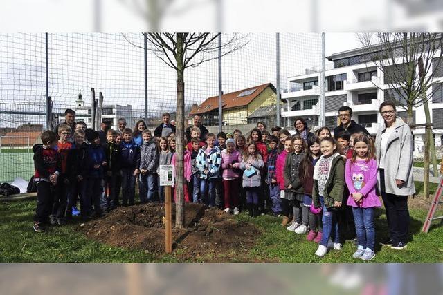Klimaschutz macht Schule