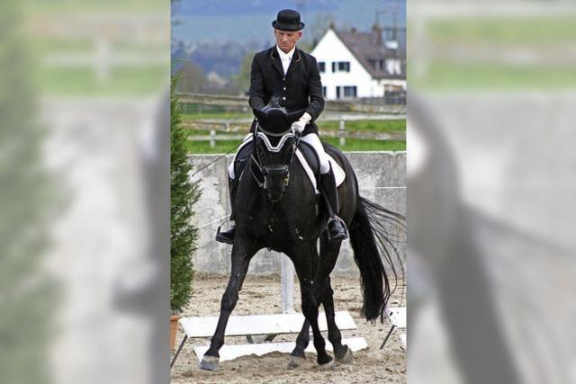 Siege auf dem Pferd der Gattin