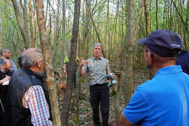 Anschauungsunterricht im Wald von Kürzell