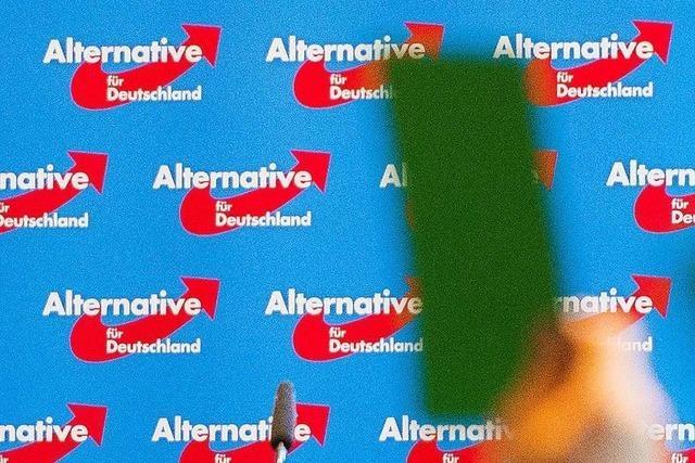 Rücktritte und Wechsel: Es knirscht im Vorstand der Kreis-AfD