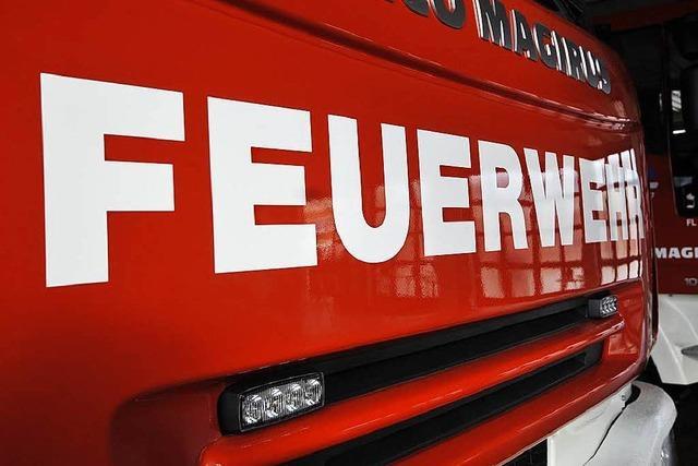 Staub löst Feueralarm in einem Hörsaal der Universität aus