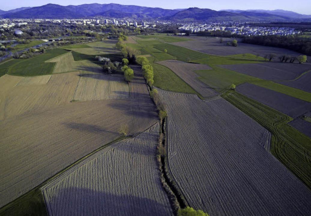 Dietenbach: Hier soll der neue Stadtteil entstehen.  | Foto: Michael Saurer