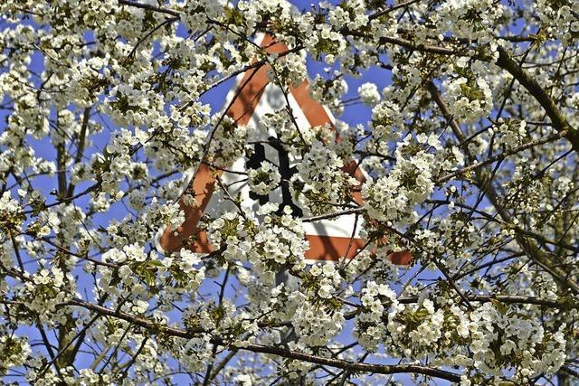Kirschblütenfest im Eggenertal