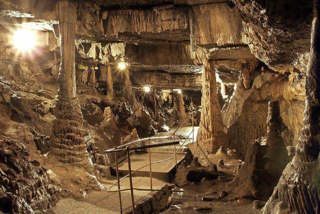Entdeckungen abseits des Tageslichts in der Erdmannshöhle und Tschamberhöhle