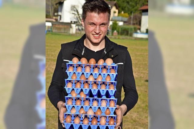 Täglich 220 bis 230 Eier