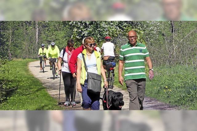 Über 1200 Wanderer am Kaiserstuhl