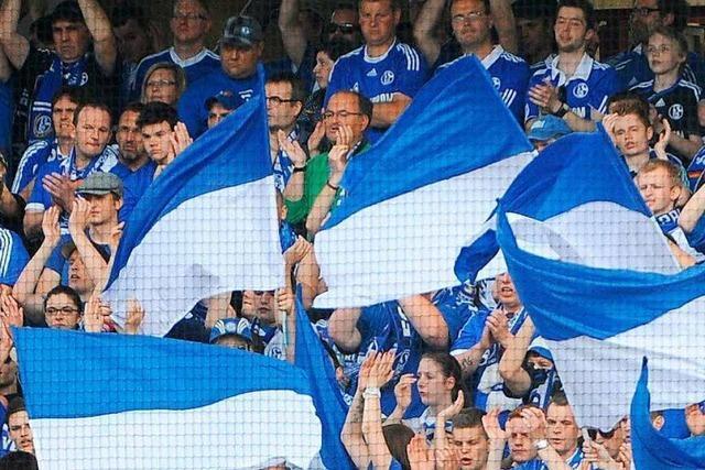 Singende Schalke-Fans auf Stadionzaun müssen Bußgeld zahlen