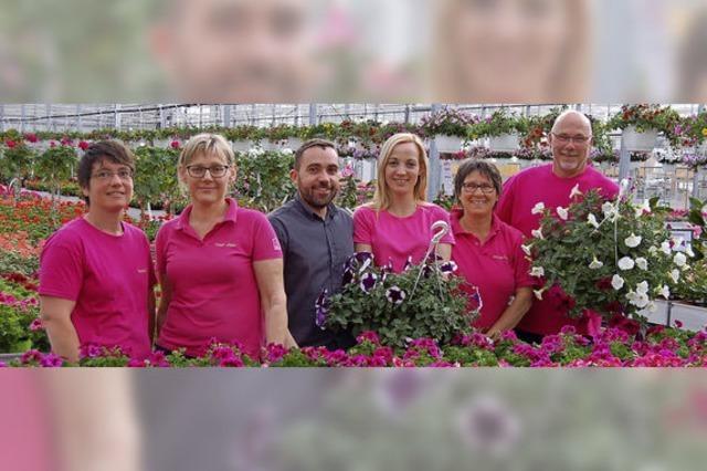 Blühendes in großer Vielfalt für Balkon und Garten