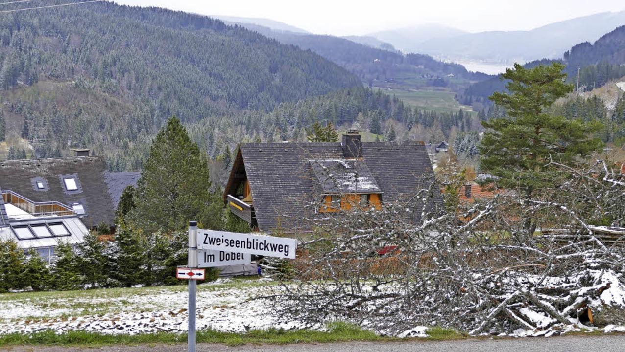 Hoch über Bärental und mit Ausblick zu...nn Feldberg sechs Bauplätze anbieten.   | Foto: Ralf Morys