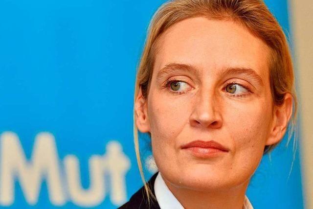 AfD-Politikerin Alice Weidel könnte Spitzenkandidatin werden