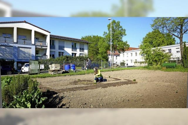 Querbeet: Begegnungen bei der Gartenarbeit