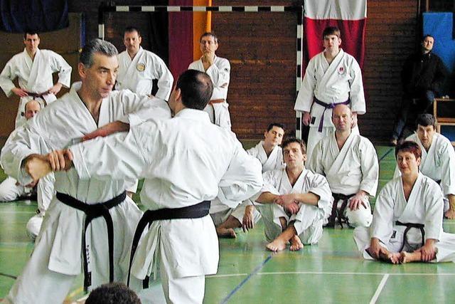 Karatesportler kritisieren Vorstand des Turnvereins