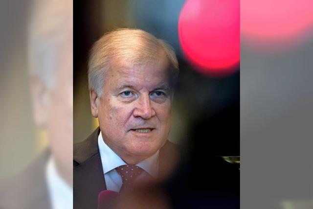 Horst Seehofer macht wohl weiter