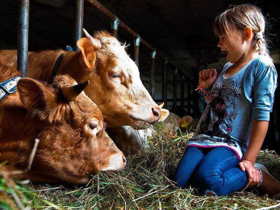 Ferien auf dem Bauernhof – da begegnen sich Stadt und Dorf direkt.  | Foto: Patrick Pleul