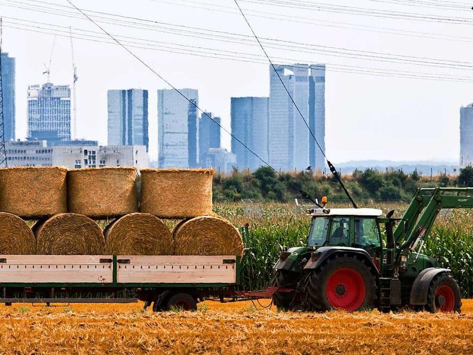 Stadt und Land – ein harter Kontrast wie hier in Frankfurt  | Foto: dpa