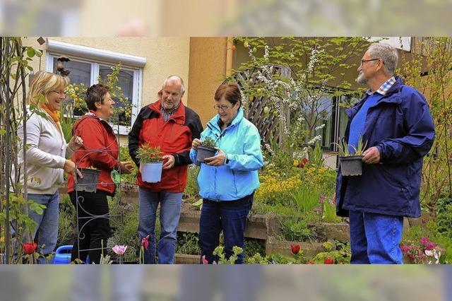 Pflanzentauschtag in Kippenheim
