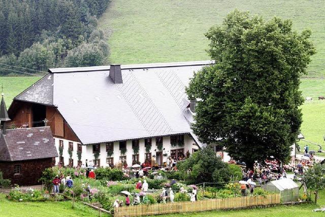 Steinbachhof in St. Märgen