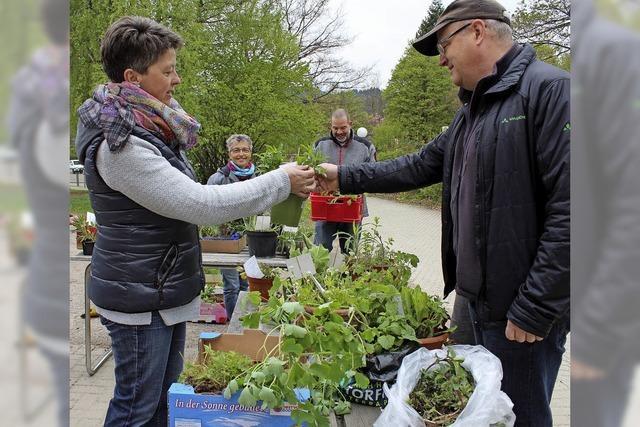 Tricks und Tipps für die neue Gartensaison