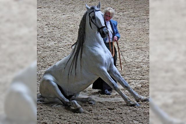Birkendorfer Pferdemarkt öffnet am 1. Mai seine Tore