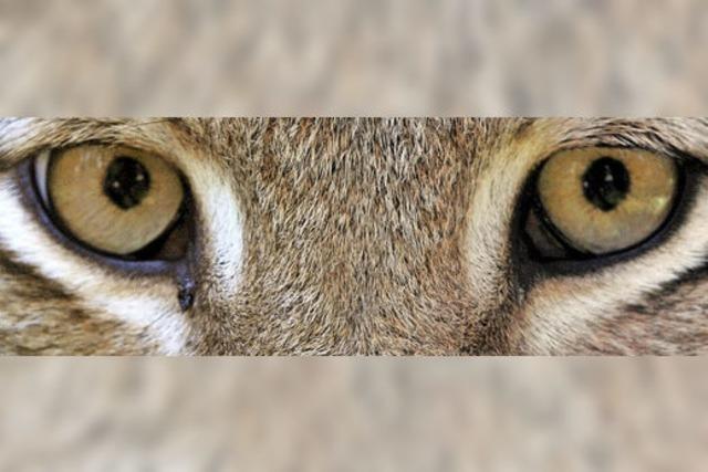 Jahrestagung der deutschen Tierpark-Gesellschaft