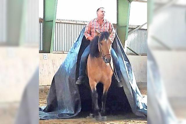 Pferde und viel Programm