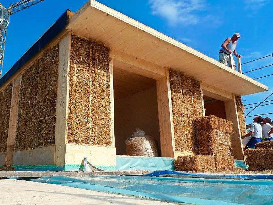 Wird Im Dreilandereck Bald Mit Stroh Anstelle Von Beton Gebaut