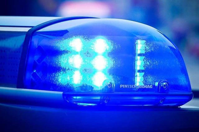 Hund beißt 15-Jährige in den Ellenbogen – Polizei sucht Hundehalterin