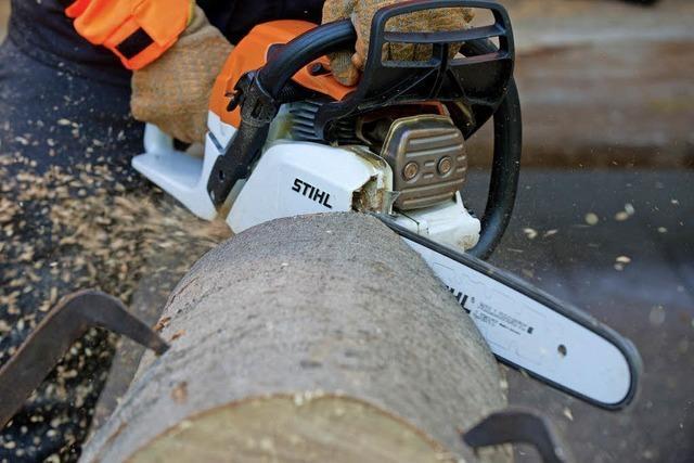 Entscheidung über Baumschutzverordnung vertagt
