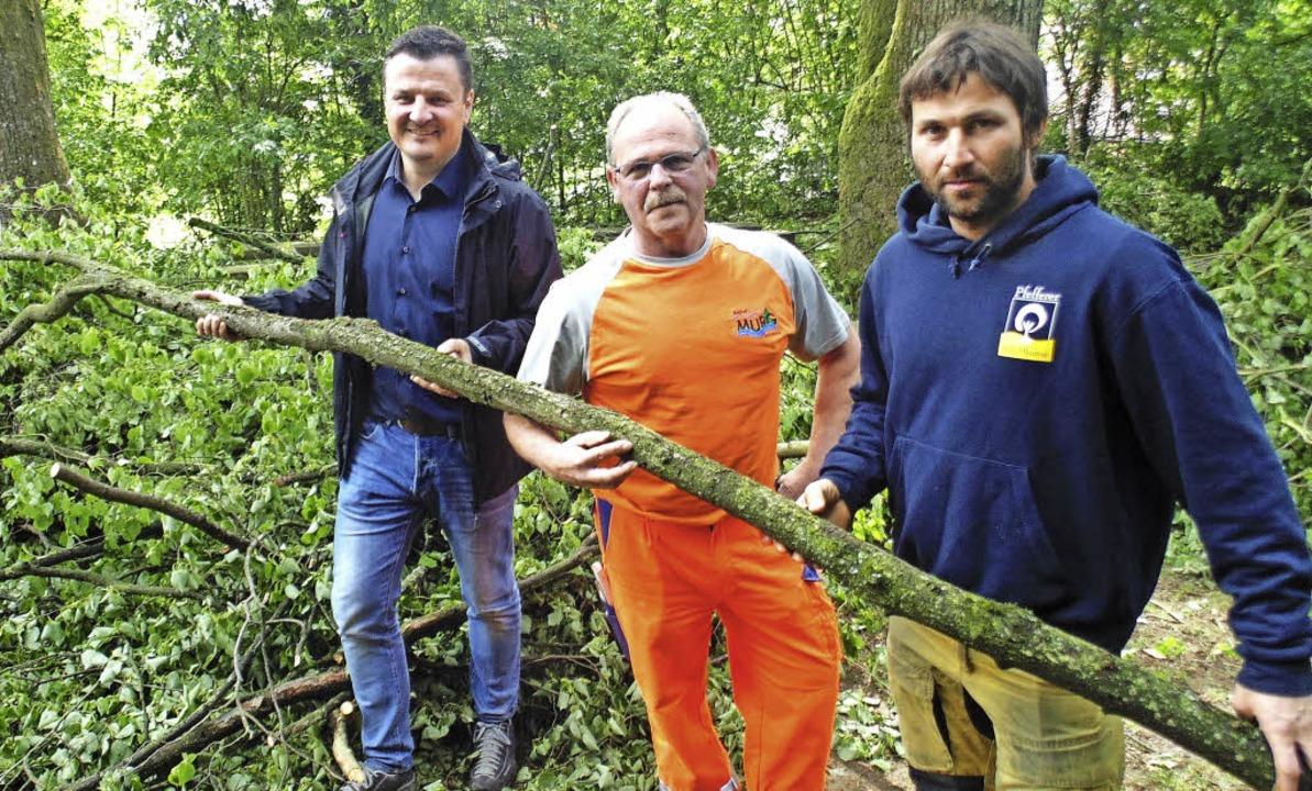 Adrian Schmidle, Bauhofleiter Michael ...ttenen Linden am Kalvarienberg in Murg  | Foto: Michael Gottstein