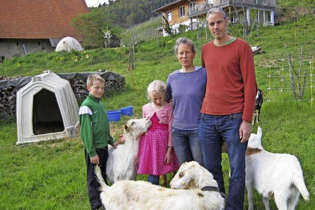 Ein Fluch sorgte für Turbulenzen auf dem Rinzberghof