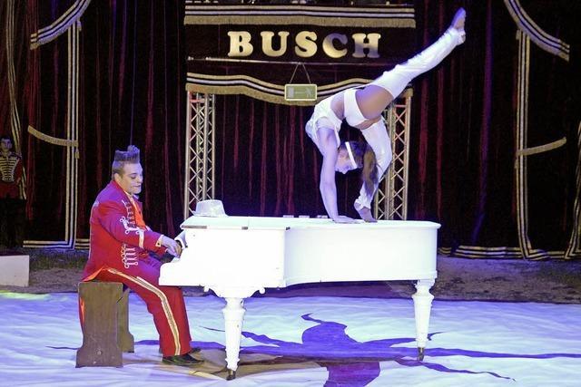 Waghalsige Akrobatik unterm Zirkuszelt