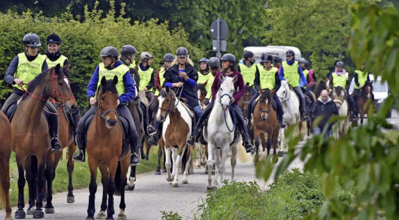 Zu Pferd durch Waltershofen     Foto: Michael Bamberger