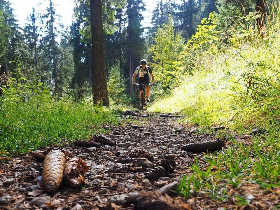 Trail, der vom Späneplatz zur Rinkenklause führt.   | Foto: Susanne Gilg