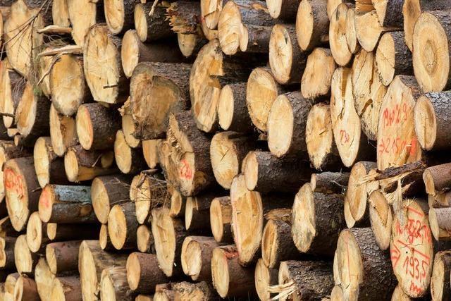 Wald ist mehr als ein Wirtschaftsfaktor