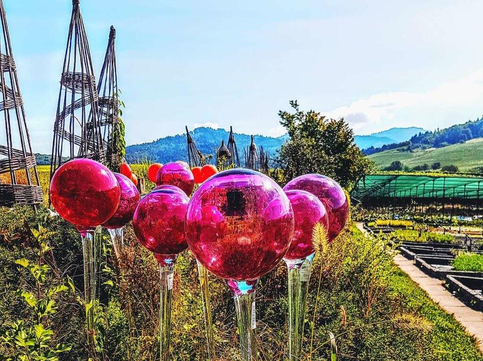 Nicht radtauglich – Rosenkugeln  | Foto: Petra Kistler