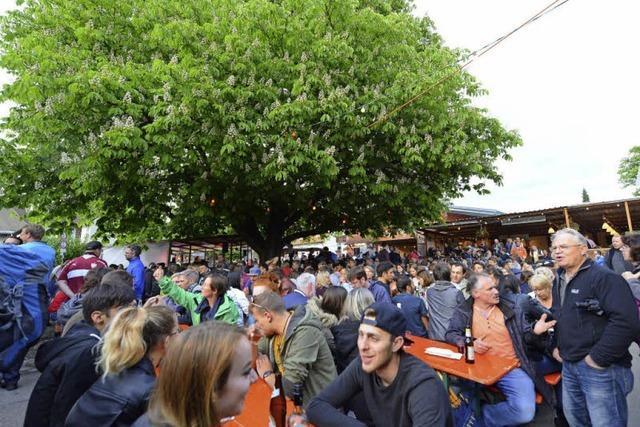 Weinfest mit verkürzter Version des Maibaums