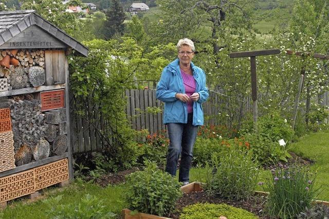 Kräuterführung von Marlene Müller in Unteribach