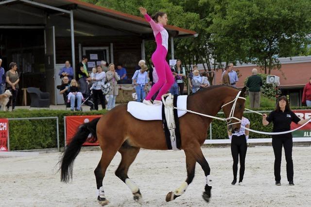 Hautnahe Begegnungen zwischen Mensch und Pferd in Lörrach