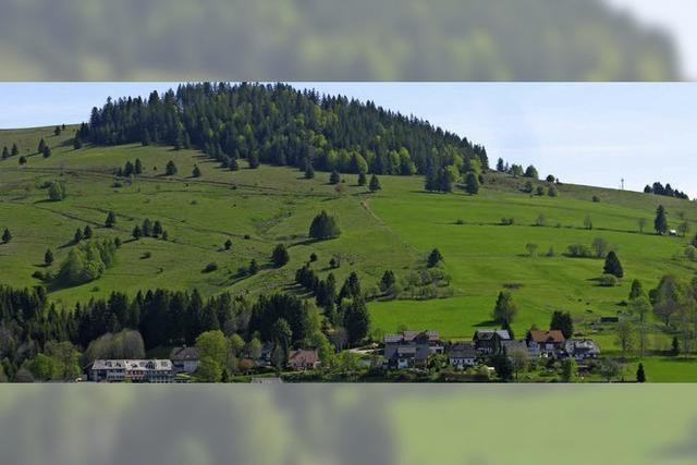 Erste Beschlüsse für Panoramahütte