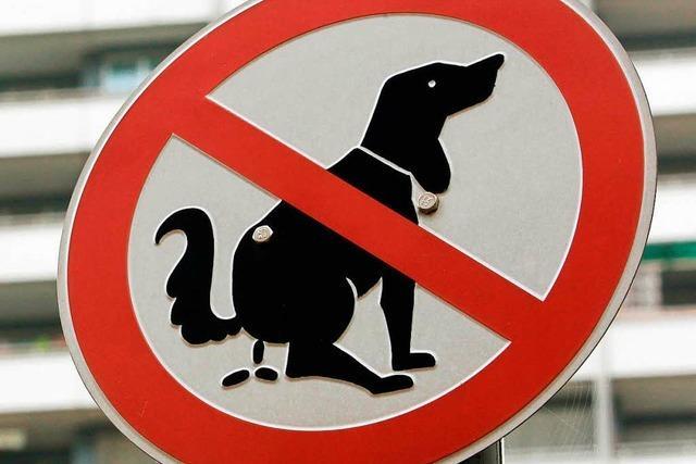 Grüne: Hundekot an der Spielwiese ist Zumutung