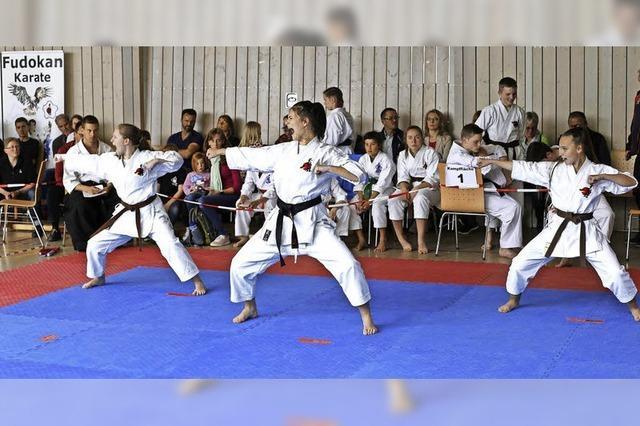 Karate-Medaillen erkämpft