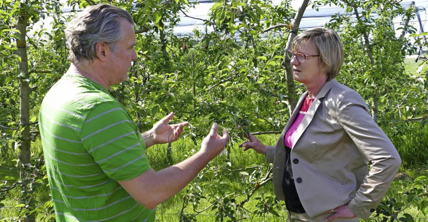 Bernd Kiechle zeigt Edith Sitzmann die Schäden an den Pflanzen.  | Foto: Vogt
