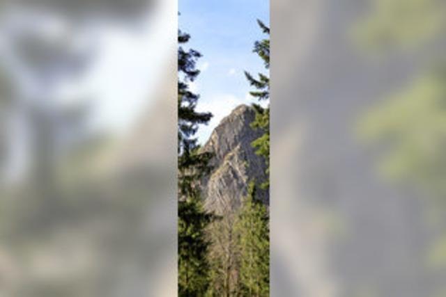 Münstertal: Wildnispfad zum Scharfenstein