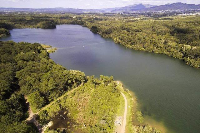 Im Opfinger See kann laut Gesundheitsamt unbesorgt gebadet werden