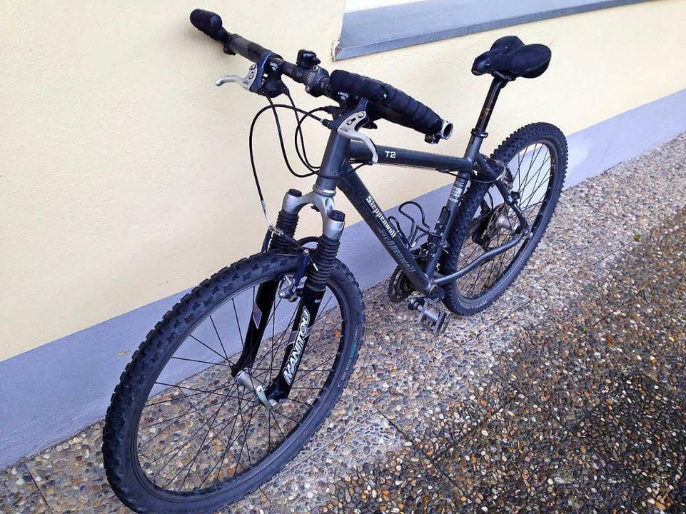 Das Fahrrad stellte eine reiselustige ...nter und wollte es nicht wieder zurück  | Foto: schnapp.de